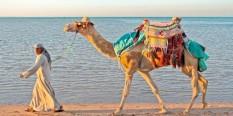 Egipat SPECIJALNA PONUDA JANUAR 2015