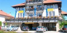Hotel Novakov dvor 2* Zlatibor Nova Godina