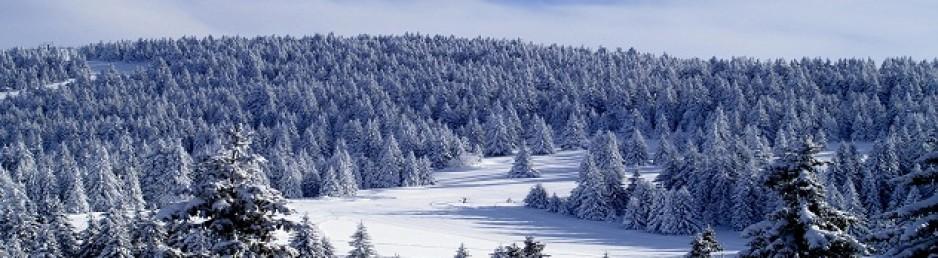 KONACI Kopaonik Zima 2014./2015.    25%  POPUST