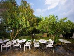 Hotel Pashos Kriopigi - Feniks tours 7