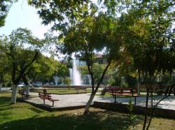 Stavros - Feniks tours Kraljevo 5