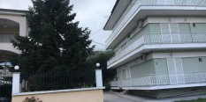 Vila Mihalis – Stavros – (150m od plaže, 30m od centra) – leto 2020.